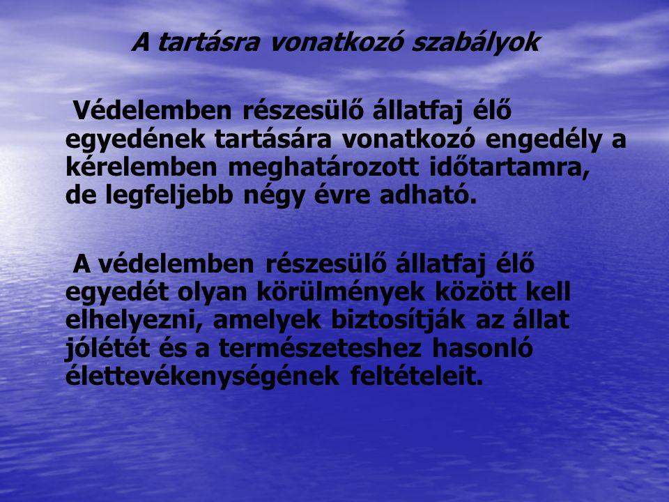 Solymászati célra tartási, hasznosítási, bemutatási engedély kultúrtörténeti hagyományápolás céljából kizárólag természetes személynek, csak Héjára (Accipiter gentilis) Karvalyra (Accipiter nisus) Szirti sasra (Aquila chrysaetos) Északi sólyomra (Falco rusticolus) Feldegg-sólyomra (Falco biarmicus) Vándorsólyomra (Falco peregrinus) adható.