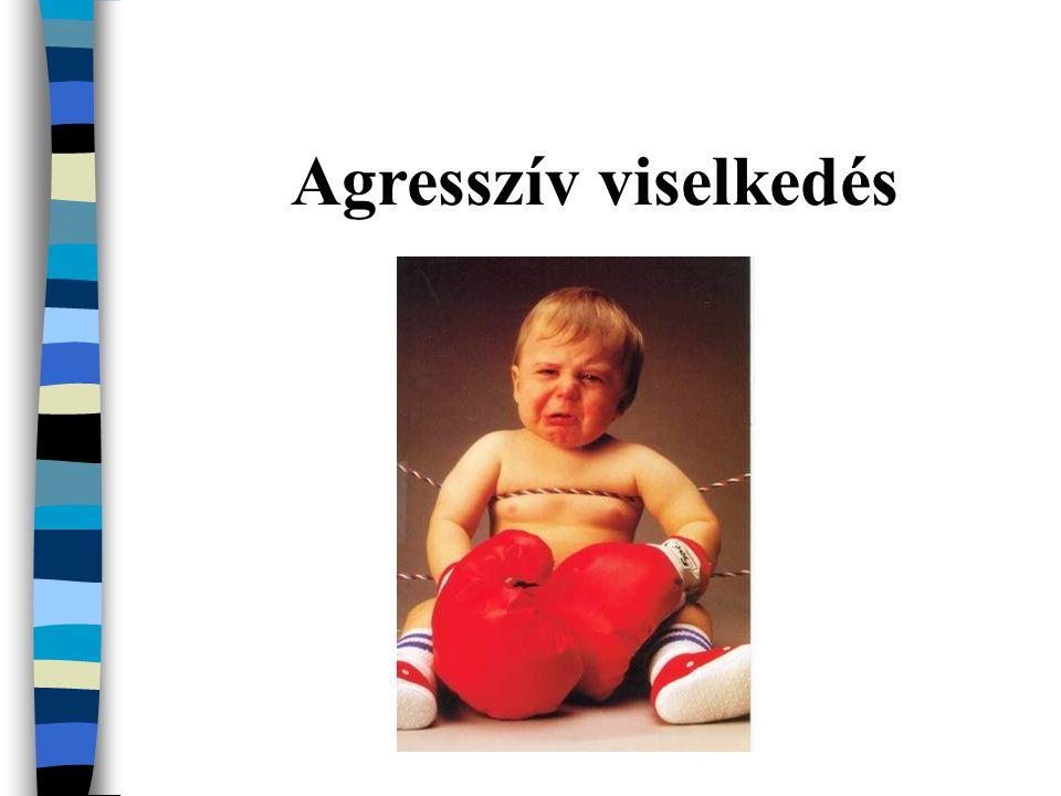 Agresszív magatartási zavar: gyerek legalább fél éven keresztül agresszív magatartást tanúsít, mások ellen vagy tulajdonuk ellen agresszíven lép fel Szerepek, szabályok be nem tartása nem agresszív magatartási zavar