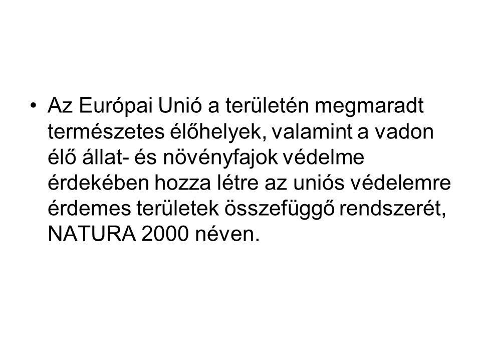 Az Európai Unió a területén megmaradt természetes élőhelyek, valamint a vadon élő állat- és növényfajok védelme érdekében hozza létre az uniós védelemre érdemes területek összefüggő rendszerét, NATURA 2000 néven.