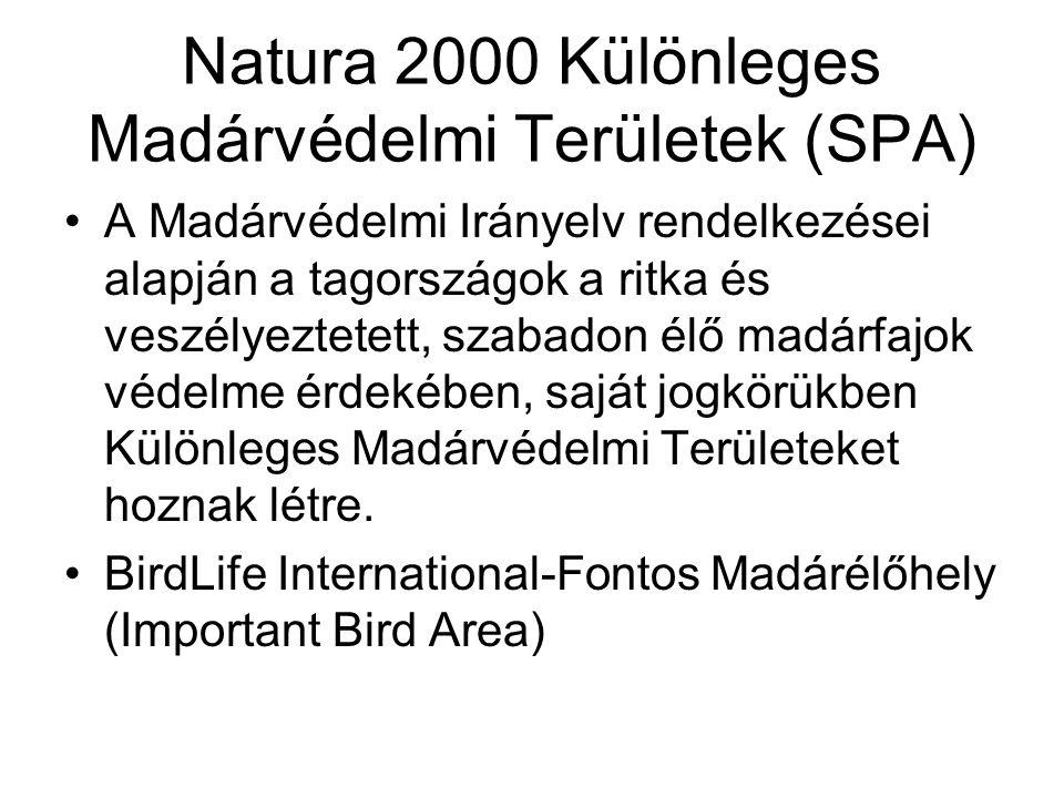 Natura 2000 Különleges Madárvédelmi Területek (SPA) A Madárvédelmi Irányelv rendelkezései alapján a tagországok a ritka és veszélyeztetett, szabadon élő madárfajok védelme érdekében, saját jogkörükben Különleges Madárvédelmi Területeket hoznak létre.