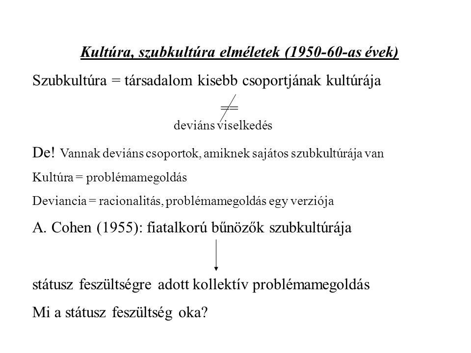 Kultúra, szubkultúra elméletek (1950-60-as évek) Szubkultúra = társadalom kisebb csoportjának kultúrája == deviáns viselkedés De.