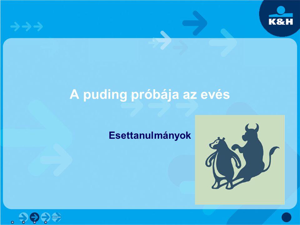 A puding próbája az evés Esettanulmányok