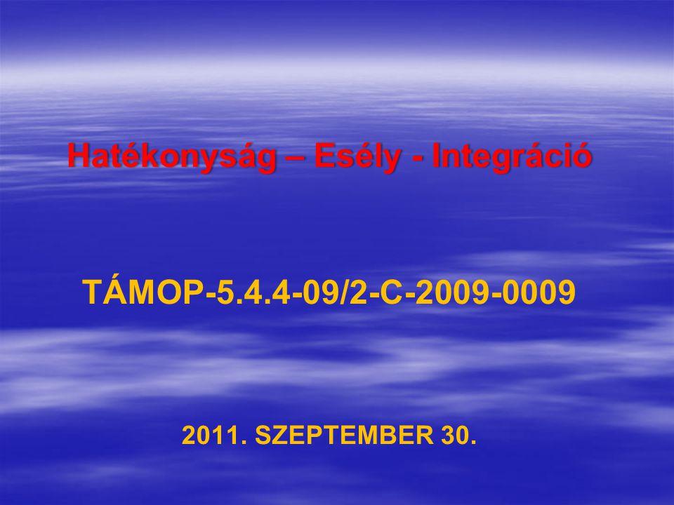 Hatékonyság – Esély - IntegrációHatékonyság – Esély - Integráció TÁMOP-5.4.4-09/2-C-2009-0009 2011.