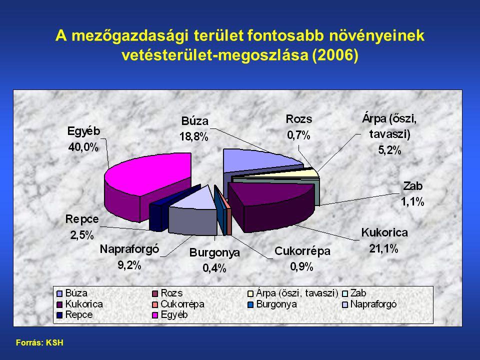 A mezőgazdasági terület fontosabb növényeinek vetésterület-megoszlása (2006) Forrás: KSH