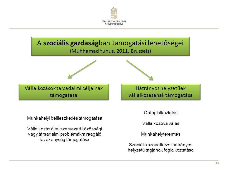 19 A szociális gazdaságban támogatási lehetőségei (Muhhamad Yunus, 2011, Brussels) Vállalkozások társadalmi céljainak támogatása Hátrányos helyzetűek
