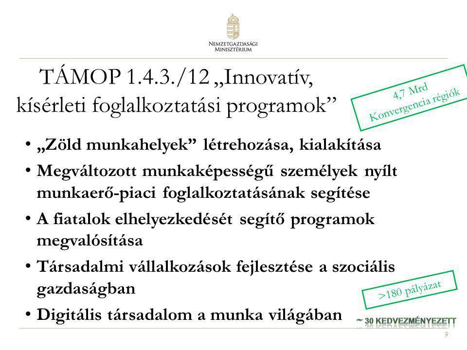 """9 TÁMOP 1.4.3./12 """"Innovatív, kísérleti foglalkoztatási programok"""" """"Zöld munkahelyek"""" létrehozása, kialakítása Megváltozott munkaképességű személyek n"""