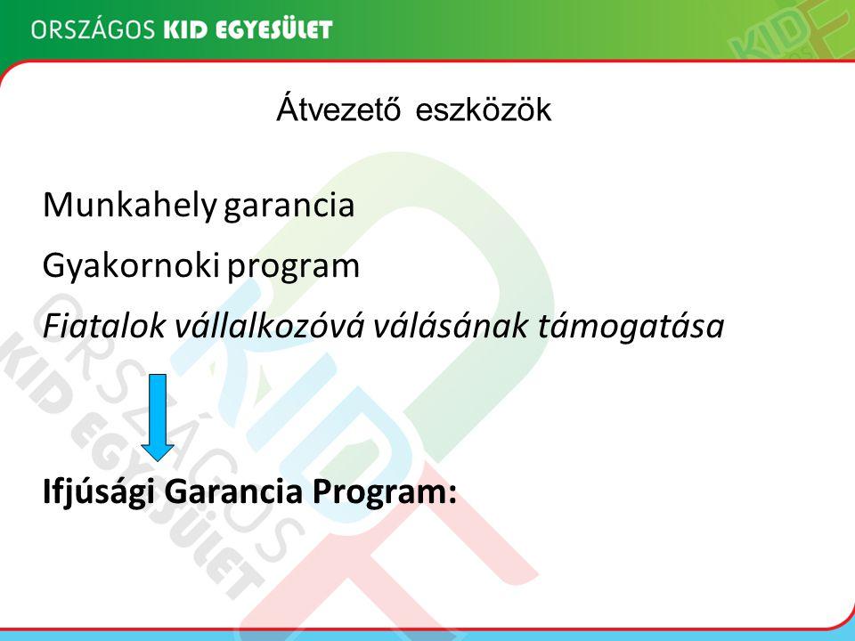 Munkahely garancia Gyakornoki program Fiatalok vállalkozóvá válásának támogatása Ifjúsági Garancia Program: Átvezető eszközök