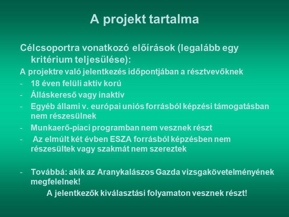 A projekt tartalma Célcsoportra vonatkozó előírások (legalább egy kritérium teljesülése): A projektre való jelentkezés időpontjában a résztvevőknek -1
