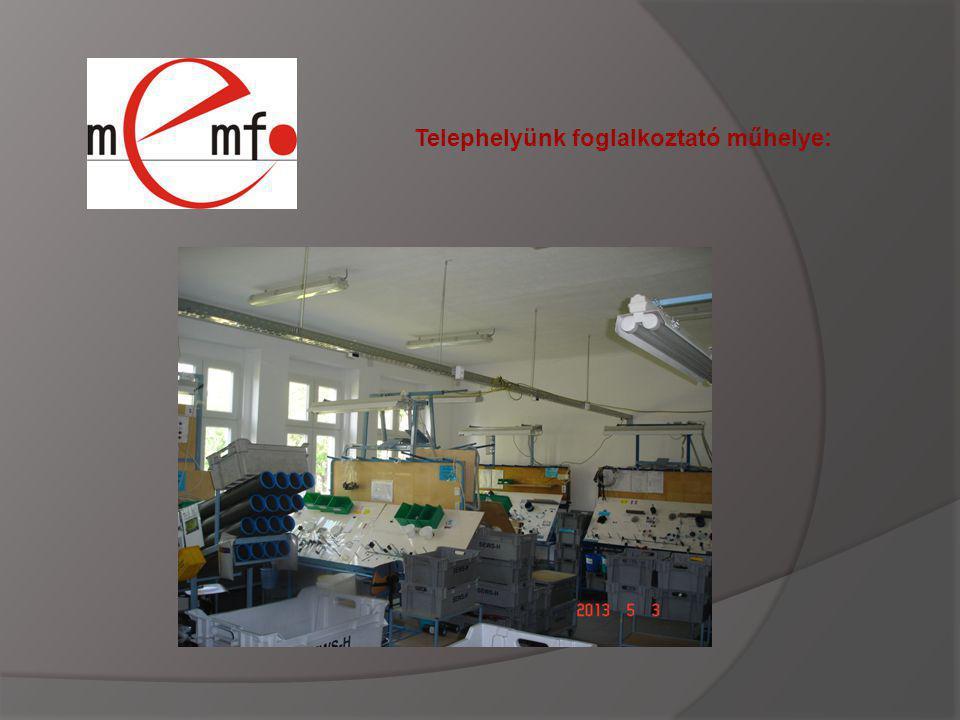 Telephelyünk foglalkoztató műhelye: