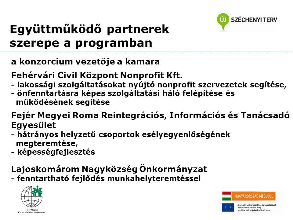 a konzorcium vezetője a kamara Fehérvári Civil Központ Nonprofit Kft.