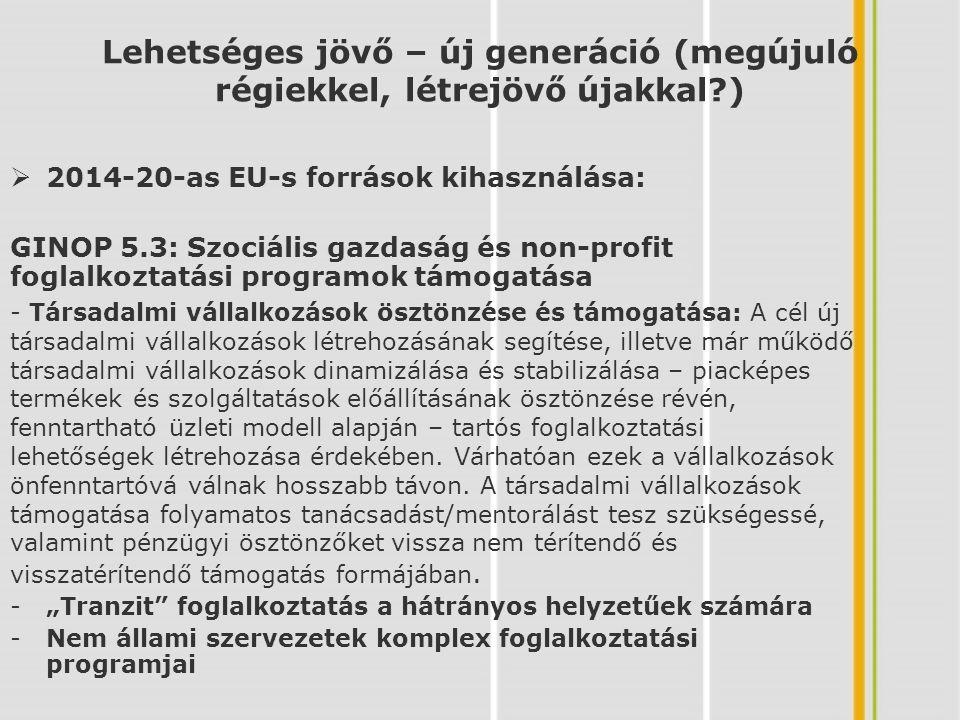 TOP 6.1: A helyi foglalkoztatási szint javítása megyei és helyi foglalkoztatási paktumok támogatásával Lehetséges jövő – új generáció (megújuló régiekkel, létrejövő újakkal?) 6.1.1 Foglalkoztatási stratégiák illetve kapcsolódó alap-dokumentumok, tanulmányok kidolgozása (humán erőforrás térképek elkészítése, meglévő vállalati háttér felmérése és elemzése- Kompetencia kézikönyv kidolgozása Befektetés-ösztönzési program kidolgozása) 6.1.2 Tanácsadási, információnyújtási tevékenység (Munkaerő keresleti - képzési kínálati adatbázis létrehozása; HR-klub működtetése; pályaorientációs tevékenység, honlap működtetése foglalkoztatási/munkáltatói fórumok; Workshop-ok, partnertalálkozók szervezése stb.) 6.1.3 Paktum inkubátor – szolgáltatásfejlesztés mikro-, kis- és középvállalkozások számára 6.1.4 Projektgenerálás, pályázatok lebonyolítása