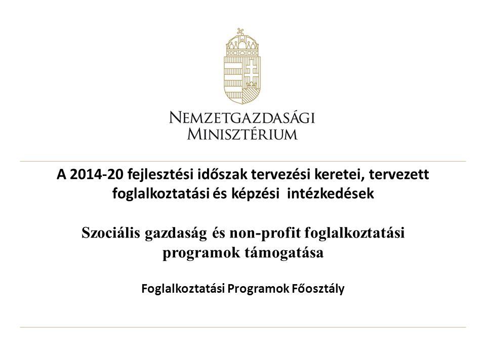 A 2014-20 fejlesztési időszak tervezési keretei, tervezett foglalkoztatási és képzési intézkedések Szociális gazdaság és non-profit foglalkoztatási pr