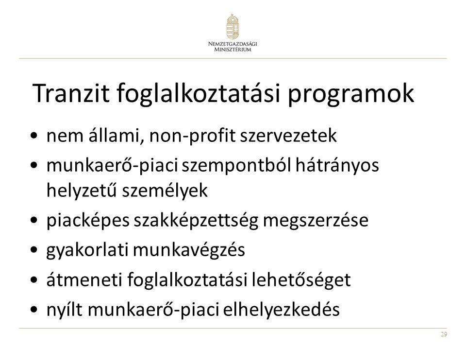 29 Tranzit foglalkoztatási programok nem állami, non-profit szervezetek munkaerő-piaci szempontból hátrányos helyzetű személyek piacképes szakképzetts