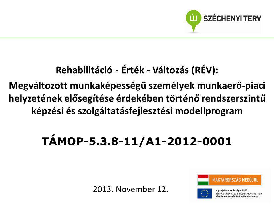 A megvalósítás ideje: 24 hónap (2012.05.01-2014.04.30.) Pályázó: 5 tagú konzorcium Fogyatékossággal Élők Esélyegyenlőségéért Közhasznú Nonprofit Kft.(konzorciumvezető) ERFO Rehabilitációs Foglalkoztató Nonprofit Kft.