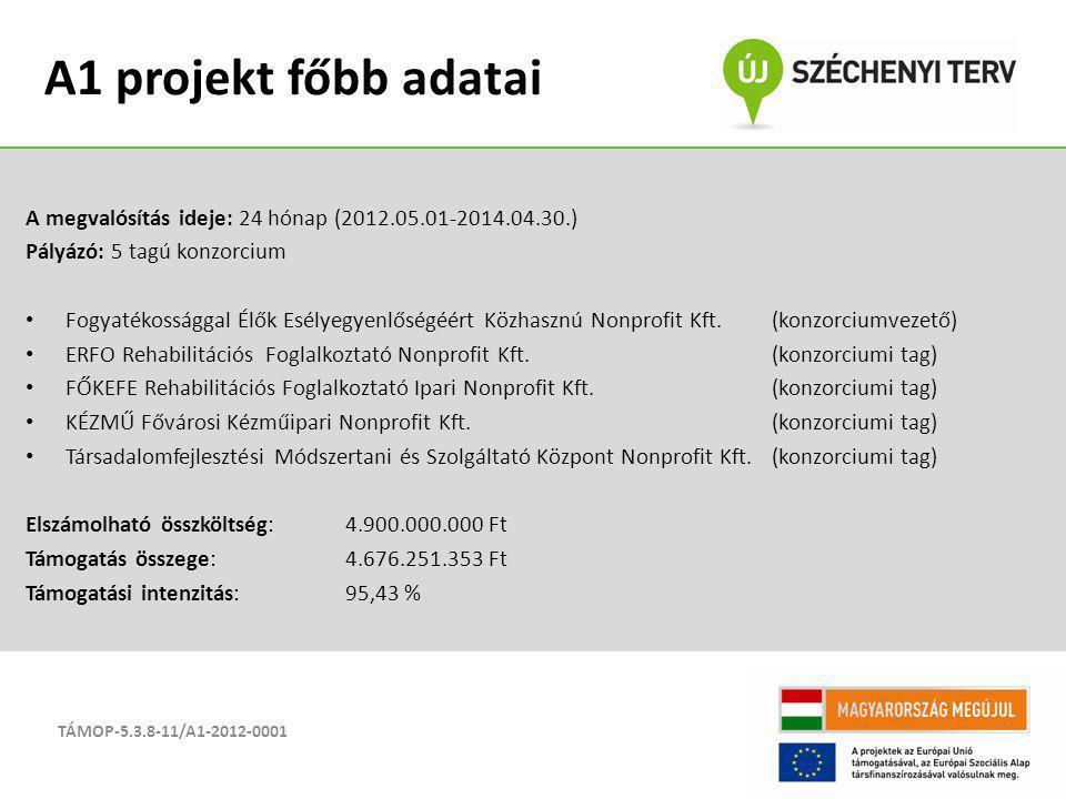 A megvalósítás ideje: 24 hónap (2012.05.01-2014.04.30.) Pályázó: 5 tagú konzorcium Fogyatékossággal Élők Esélyegyenlőségéért Közhasznú Nonprofit Kft.(