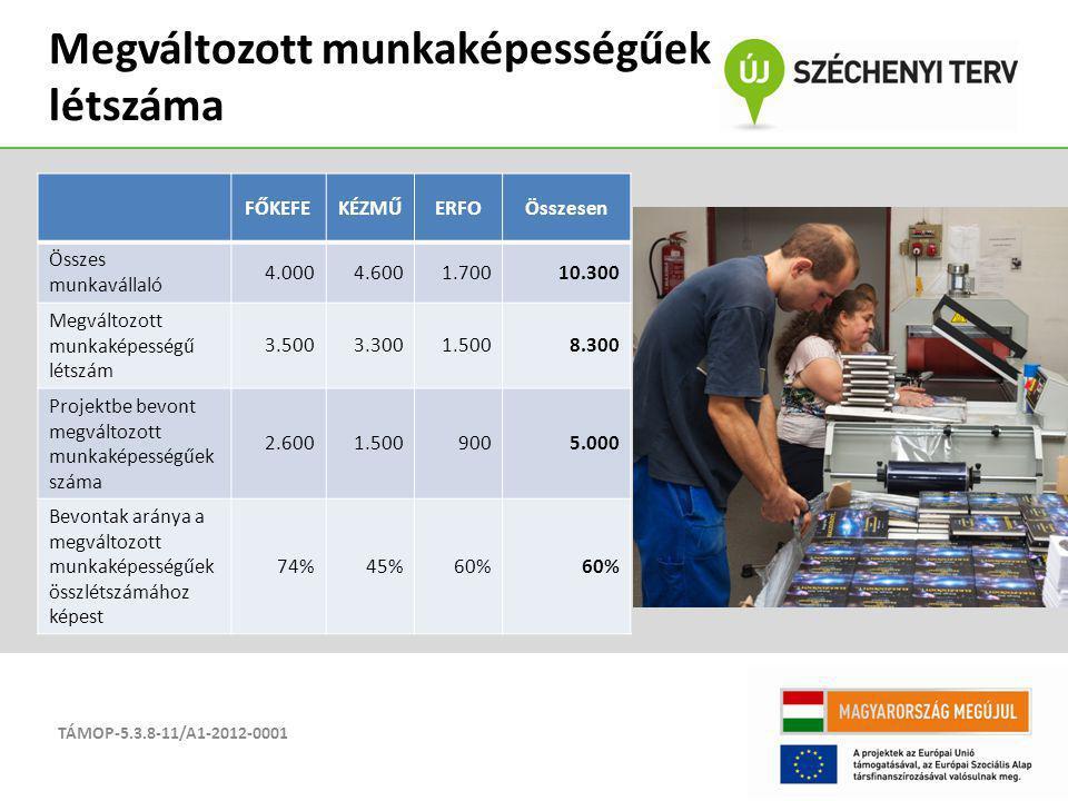 TÁMOP-5.3.8-11/A1-2012-0001 Megváltozott munkaképességűek létszáma FŐKEFEKÉZMŰERFOÖsszesen Összes munkavállaló 4.0004.6001.70010.300 Megváltozott munk
