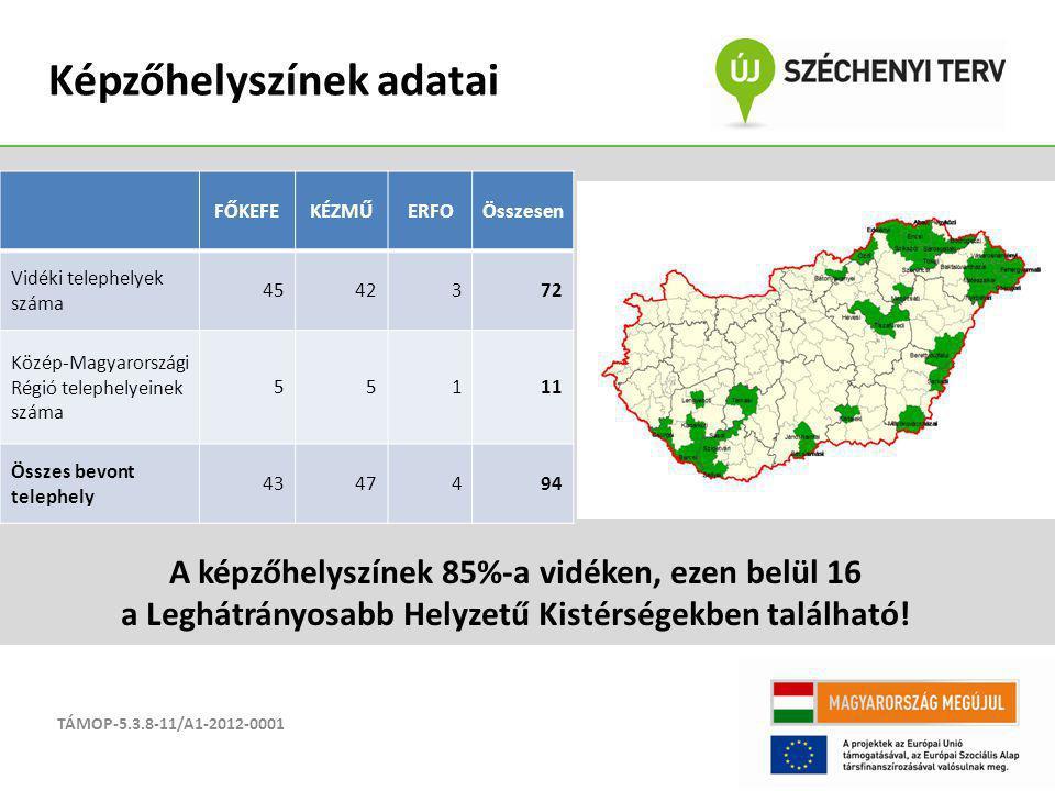 TÁMOP-5.3.8-11/A1-2012-0001 Képzőhelyszínek adatai FŐKEFEKÉZMŰERFOÖsszesen Vidéki telephelyek száma 4542372 Közép-Magyarországi Régió telephelyeinek s