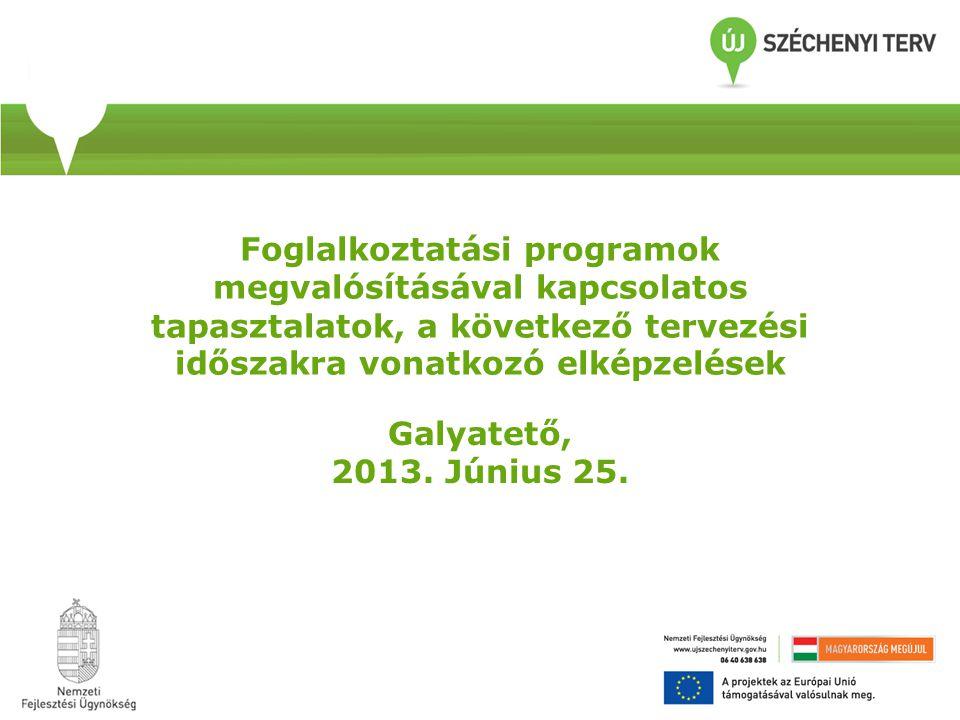 Foglalkoztatási programok megvalósításával kapcsolatos tapasztalatok, a következő tervezési időszakra vonatkozó elképzelések Galyatető, 2013.