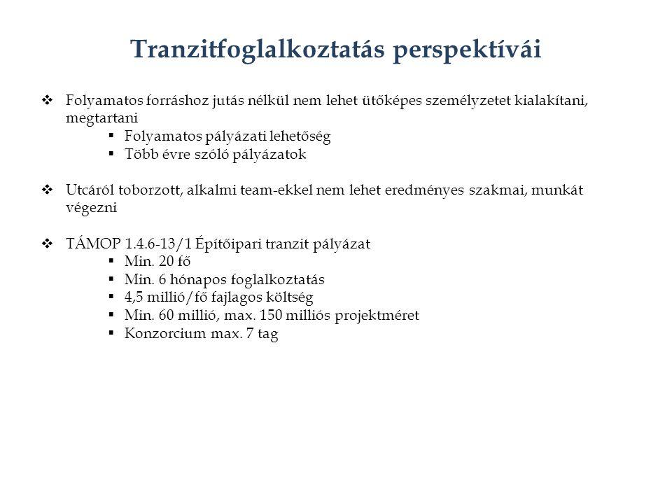 Tranzitfoglalkoztatás perspektívái  Folyamatos forráshoz jutás nélkül nem lehet ütőképes személyzetet kialakítani, megtartani  Folyamatos pályázati lehetőség  Több évre szóló pályázatok  Utcáról toborzott, alkalmi team-ekkel nem lehet eredményes szakmai, munkát végezni  TÁMOP 1.4.6-13/1 Építőipari tranzit pályázat  Min.