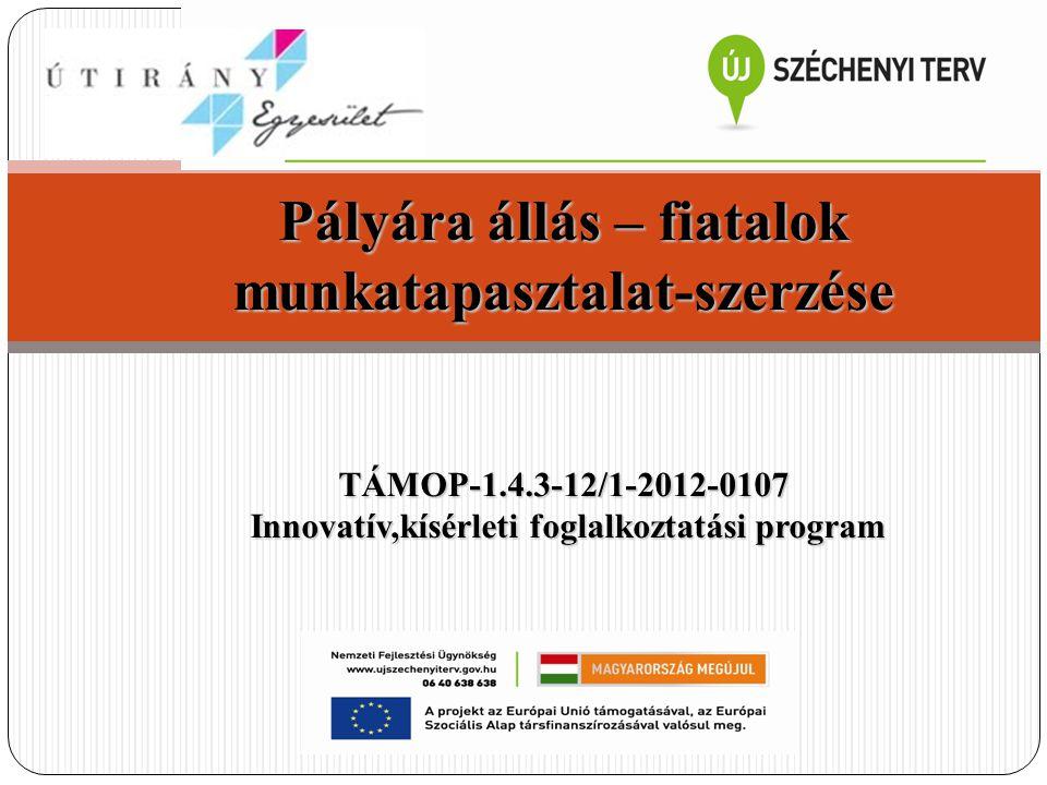 Pályára állás – fiatalok munkatapasztalat-szerzése TÁMOP-1.4.3-12/1-2012-0107 Innovatív,kísérleti foglalkoztatási program