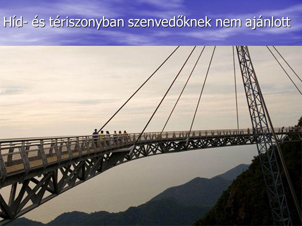 Híd- és tériszonyban szenvedőknek nem ajánlott