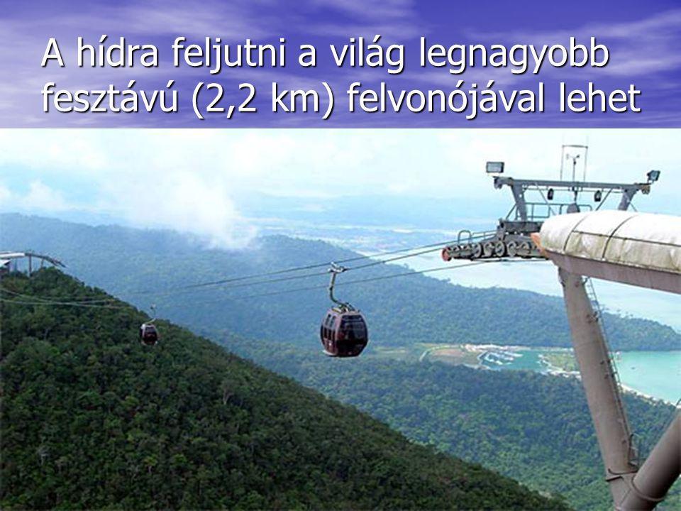 A hídra feljutni a világ legnagyobb fesztávú (2,2 km) felvonójával lehet