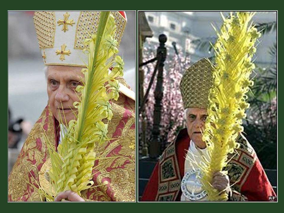 Örökösei, ez idő óta, több mint 420 éve, élnek is a pápa által odaítélt joggal – a pálmaágak kizárólagos árusításával.