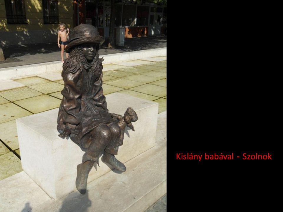 Macskát tartó kislány - Győr