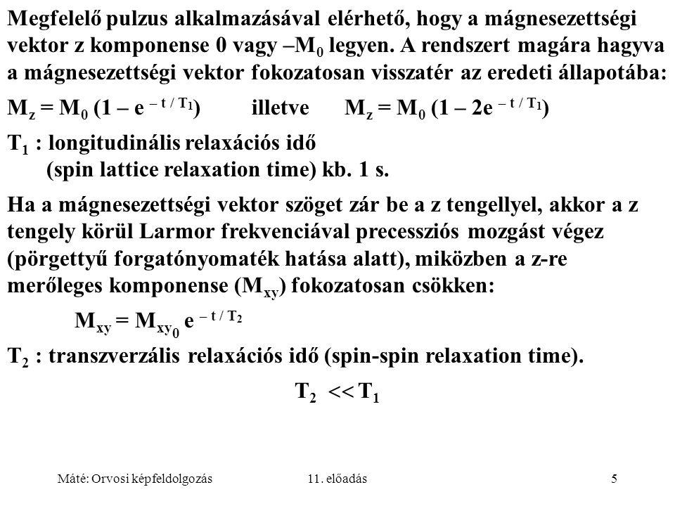 Máté: Orvosi képfeldolgozás11. előadás5 Megfelelő pulzus alkalmazásával elérhető, hogy a mágnesezettségi vektor z komponense 0 vagy –M 0 legyen. A ren
