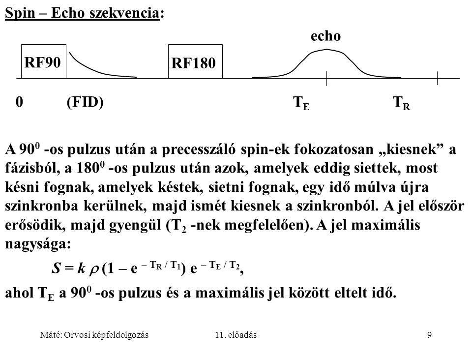 Máté: Orvosi képfeldolgozás11. előadás9 Spin – Echo szekvencia: echo RF90 RF180 0 (FID) T E T R A 90 0 -os pulzus után a precesszáló spin-ek fokozatos