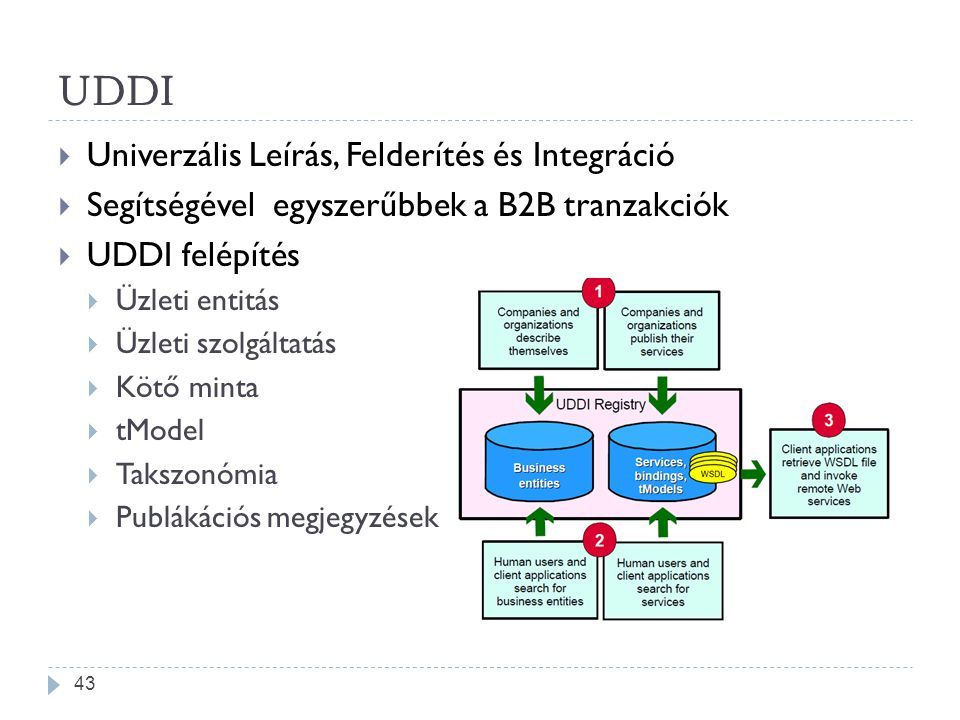 UDDI  Univerzális Leírás, Felderítés és Integráció  Segítségével egyszerűbbek a B2B tranzakciók  UDDI felépítés  Üzleti entitás  Üzleti szolgálta