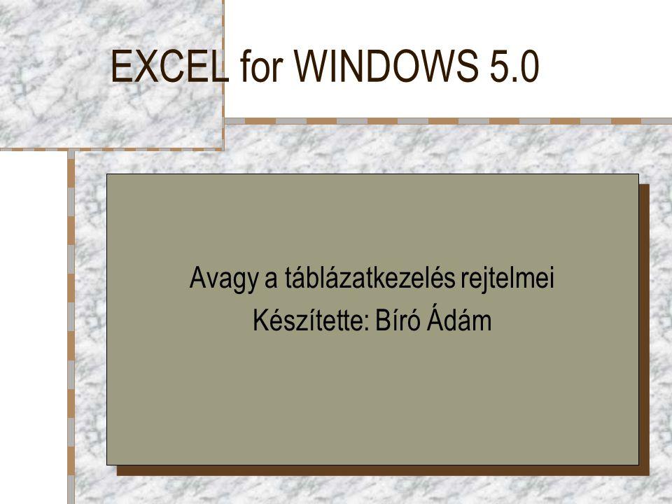 EXCEL for WINDOWS 5.0 Avagy a táblázatkezelés rejtelmei Készítette: Bíró Ádám Avagy a táblázatkezelés rejtelmei Készítette: Bíró Ádám