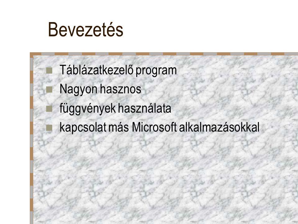 Bevezetés Táblázatkezelő program Nagyon hasznos függvények használata kapcsolat más Microsoft alkalmazásokkal