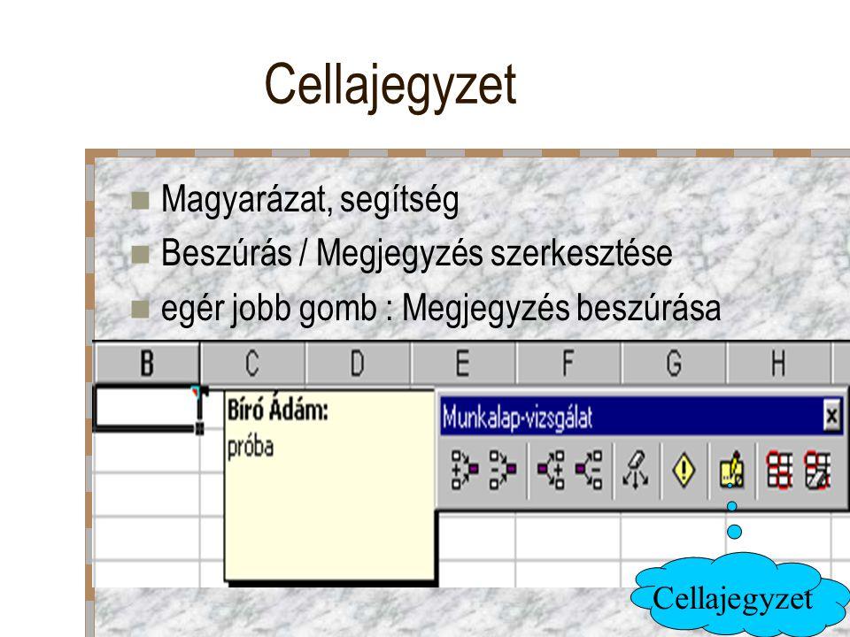 Cellajegyzet Magyarázat, segítség Beszúrás / Megjegyzés szerkesztése egér jobb gomb : Megjegyzés beszúrása Cellajegyzet