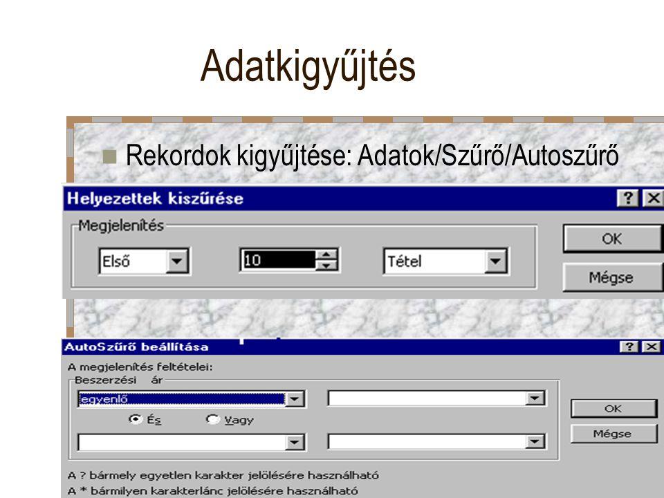 Adatkigyűjtés Rekordok kigyűjtése: Adatok/Szűrő/Autoszűrő