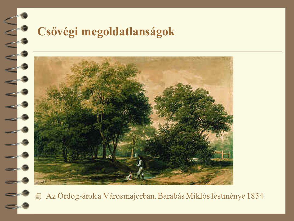 Csővégi megoldatlanságok 4 Az Ördög-árok a Városmajorban. Barabás Miklós festménye 1854