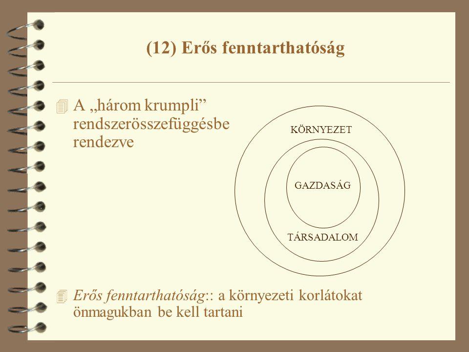 """4 A """"három krumpli rendszerösszefüggésbe rendezve 4 Erős fenntarthatóság:: a környezeti korlátokat önmagukban be kell tartani (12) Erős fenntarthatóság KÖRNYEZET TÁRSADALOM GAZDASÁG"""