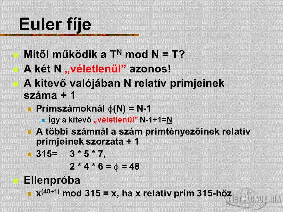 """Euler fíje Mitől működik a T N mod N = T? A két N """"véletlenül"""" azonos! A kitevő valójában N relatív prímjeinek száma + 1 Prímszámoknál  (N) = N-1 Így"""