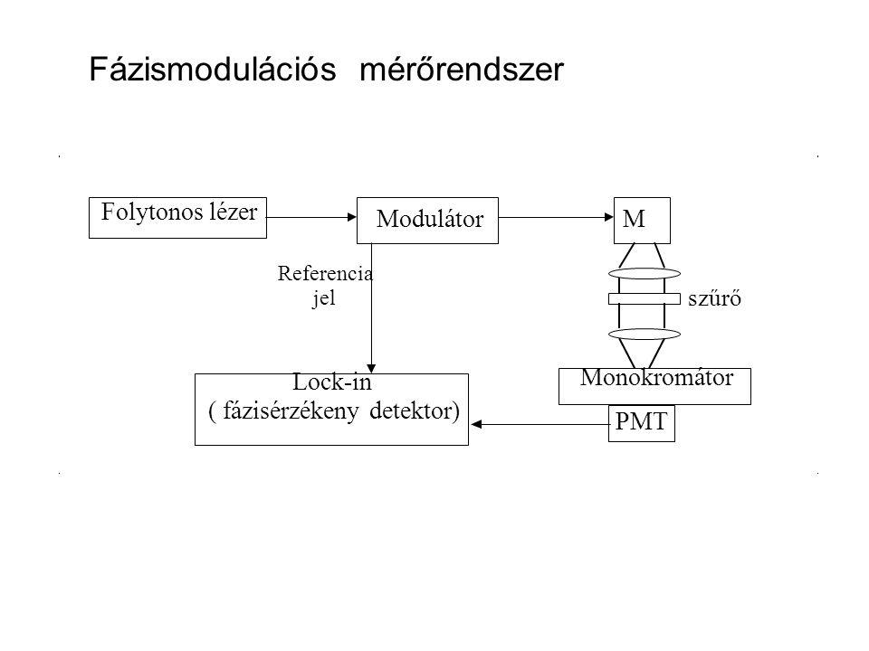 Folytonos lézer ModulátorM Monokromátor PMT Lock-in ( fázisérzékeny detektor) Referencia jel szűrő Fázismodulációs mérőrendszer