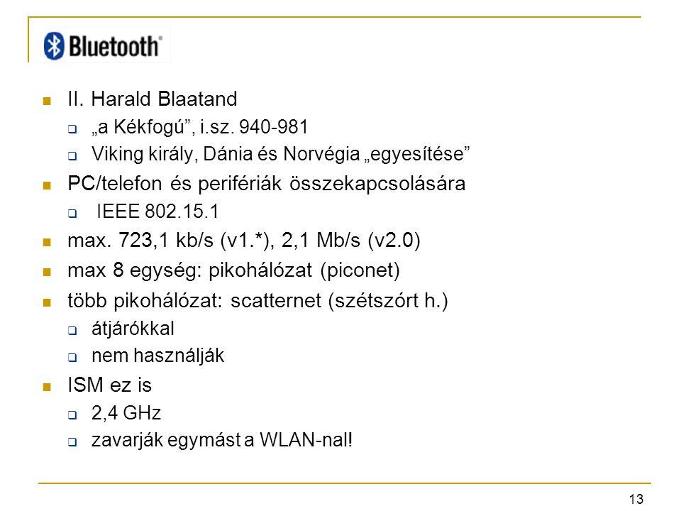 """13 II.Harald Blaatand  """"a Kékfogú , i.sz."""