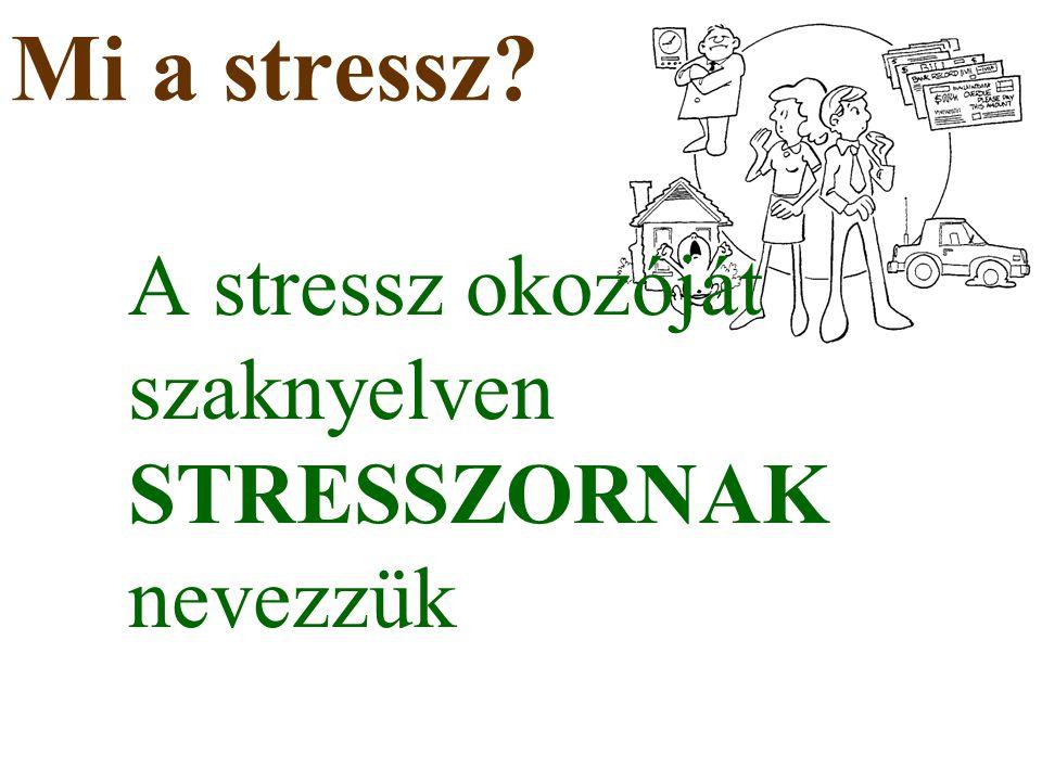 Mi a stressz? A stressz okozóját szaknyelven STRESSZORNAK nevezzük