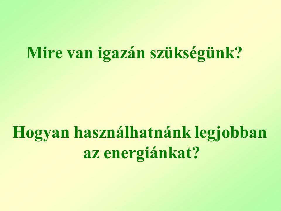 Hogyan használhatnánk legjobban az energiánkat? Mire van igazán szükségünk?