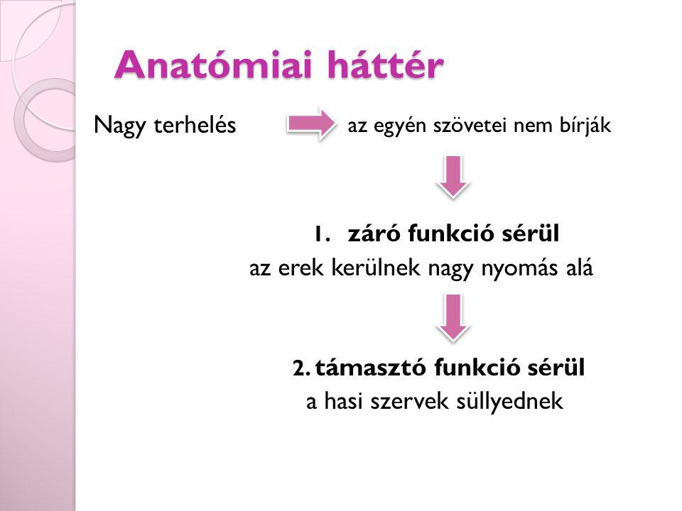 Anatómiai háttér Nagy terhelés 1.záró funkció sérül az erek kerülnek nagy nyomás alá 2.