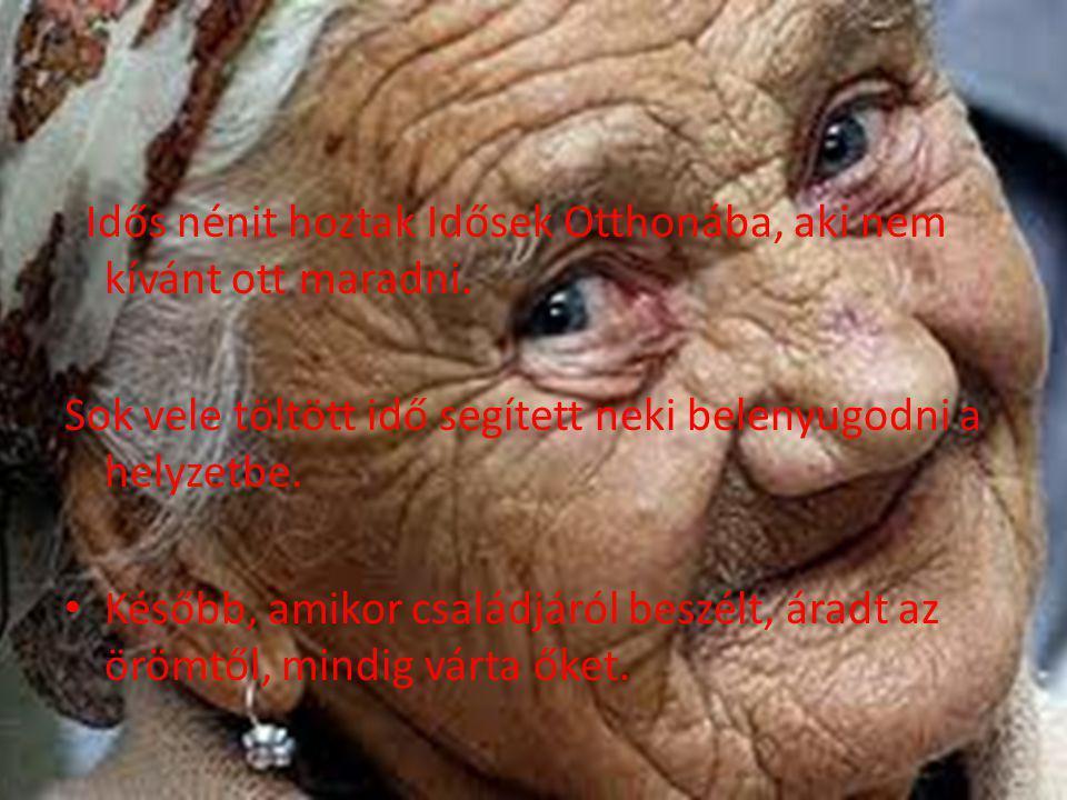 Idős nénit hoztak Idősek Otthonába, aki nem kívánt ott maradni. Sok vele töltött idő segített neki belenyugodni a helyzetbe. Később, amikor családjáró