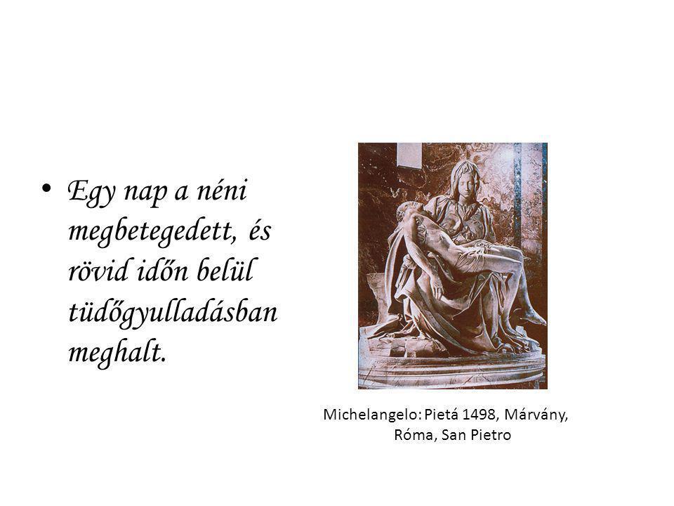 Egy nap a néni megbetegedett, és rövid időn belül tüdőgyulladásban meghalt. Michelangelo: Pietá 1498, Márvány, Róma, San Pietro
