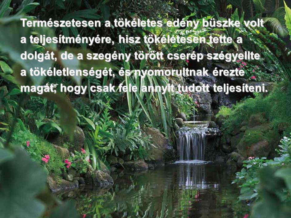 A két év keserűség után, egyik nap megszólította a vízhordót a pataknál.