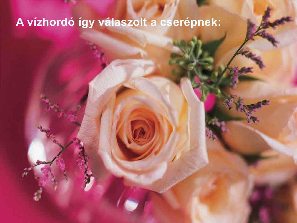 Észrevetted, hogy virágok az ösvényen csak a te oldaladon teremnek, s nem a másik cserép oldalán.