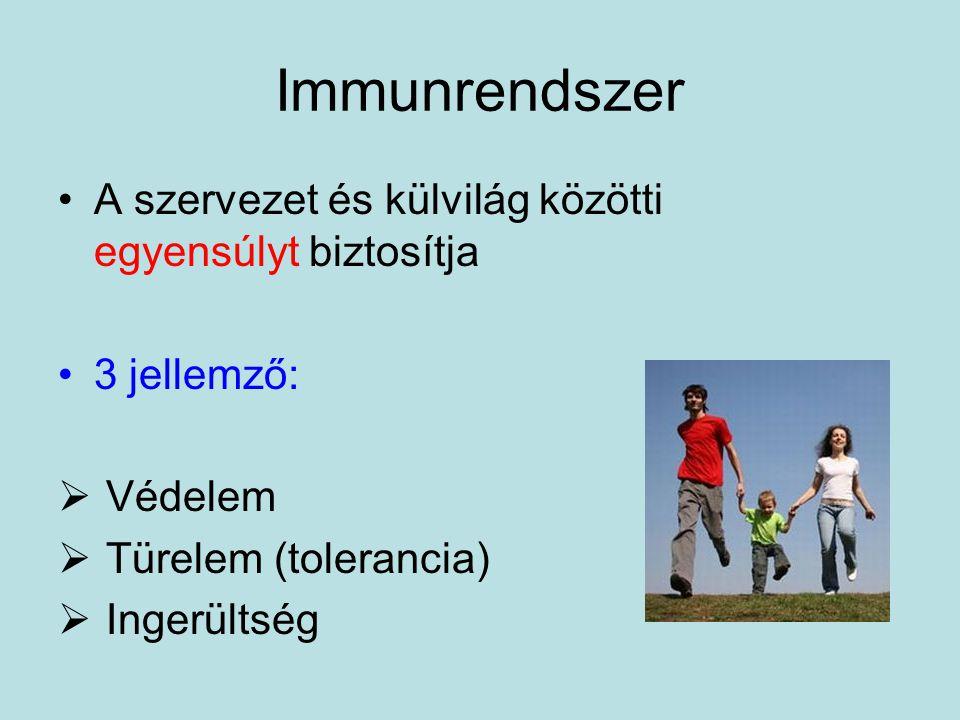 Immunrendszer A szervezet és külvilág közötti egyensúlyt biztosítja 3 jellemző:  Védelem  Türelem (tolerancia)  Ingerültség