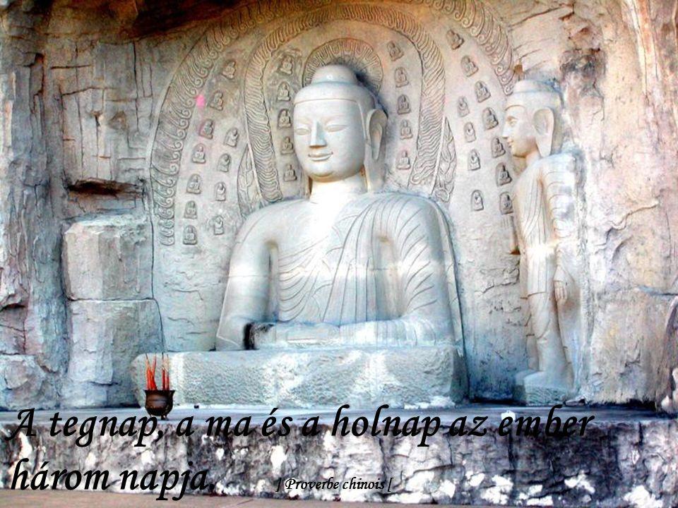 A saját tudatlanságunk felismerése tudásunk legértékesebb része. ] Proverbe chinois [