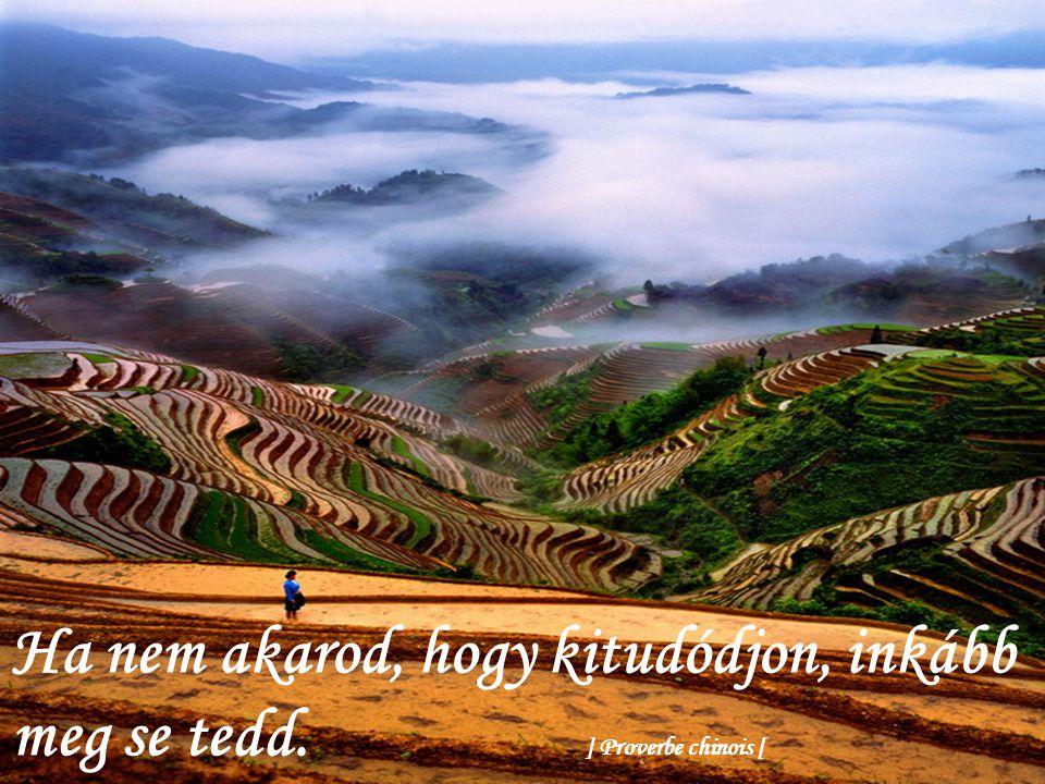 Könnyebb elterelni egy folyót, mint változtatni jellemünkön. ] Proverbe chinois [